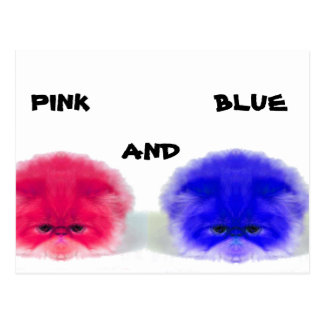 LOOCKY PINK AND BLUE POSTCARD