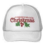 Look a lot like Christmas Hat