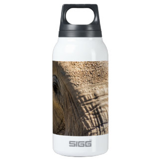 Look An Elephant In The Face Thermos Water Bottle