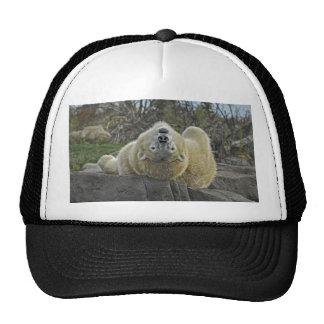 Look at Life with a Fresh Perspective  Polar Bear Trucker Hat