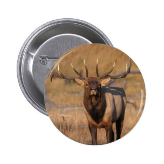Look at Me! 2 Inch Round Button