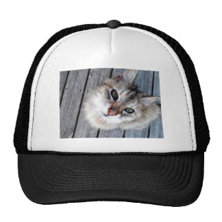 Look at that face!!! trucker hat