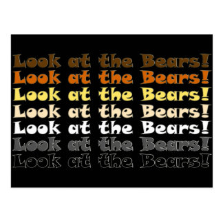 Look at the Bears! Postcard
