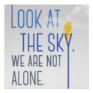 Look At The Sky - We Are Not Alone Poster