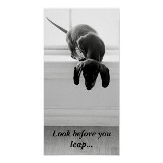 Look before you leap... poster