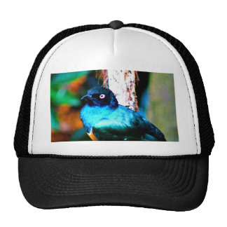 Look forward to love and peace superbus starling trucker hat