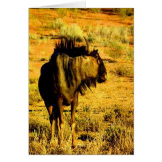 Look forward to my love blue wildebeest antelope greeting card