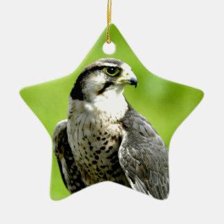 Look forward to peace and love bird falk gyr ceramic ornament