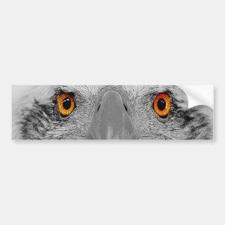 Look into my eyes car bumper sticker