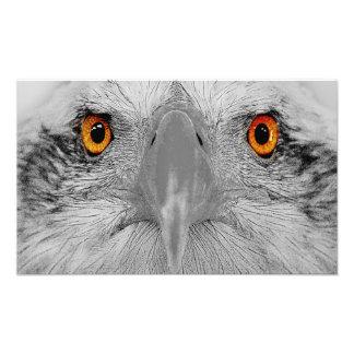 Look into  my eyes art photo