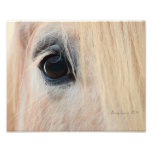 Look into the soul photo print