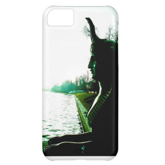Look loss. cover for iPhone 5C
