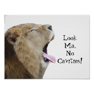Look Ma, No Cavities!  Lion Poster Print