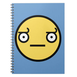 Look of Disapproval Notebook