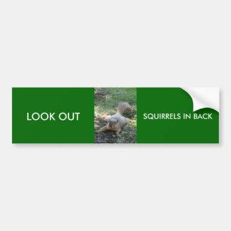 LOOK OUT, SQUIRRELS IN BACK BUMPER STICKER