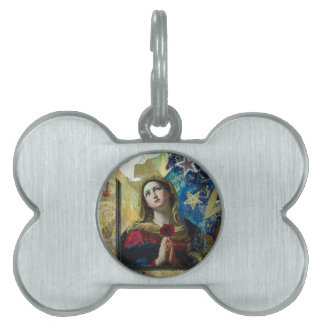 Look Up Pet ID Tags