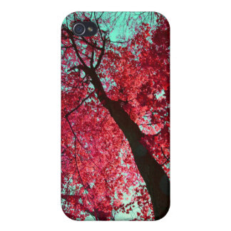 Look Up Tree iPhone 4 Cover