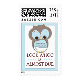 Look Whoo is Due Sweet Baby Owl Baby Postage Stamp