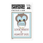 Look Whoo is Due Sweet Baby Owl Baby Postage Stamp