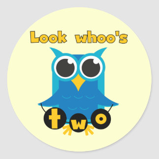 Look Whoo's 2 Birthday Tshirts and Gifts Classic Round Sticker