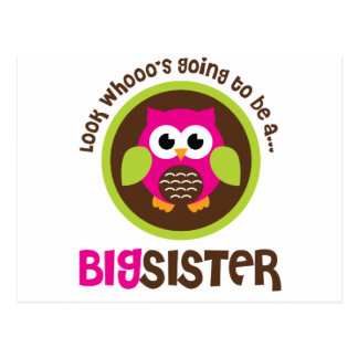 Look Whoos Going to be a Big Sister Owl Postcard