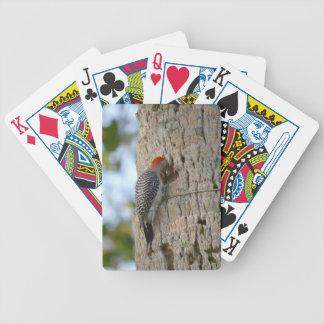 lookin dirigido rojo del pájaro de la pulsación de baraja de cartas