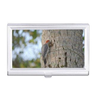 lookin dirigido rojo del pájaro de la pulsación de caja de tarjetas de negocios