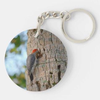 lookin dirigido rojo del pájaro de la pulsación de llavero redondo acrílico a doble cara