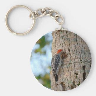 lookin dirigido rojo del pájaro de la pulsación de llavero redondo tipo pin