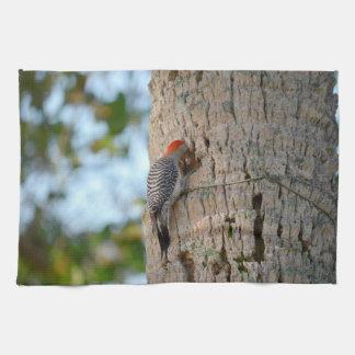 lookin dirigido rojo del pájaro de la pulsación de toallas