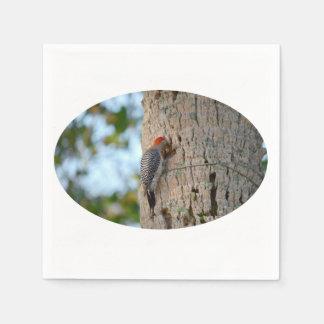 lookin dirigido rojo del pájaro de la pulsación de servilletas de papel