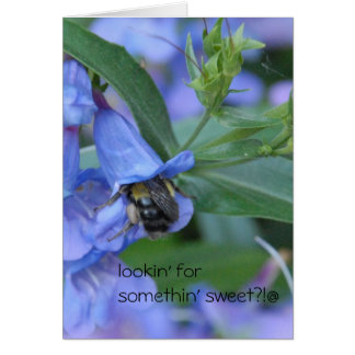 lookin' for somethin' sweet?? greeting cards