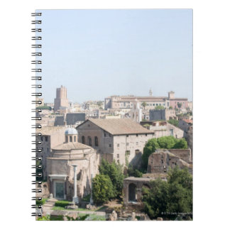 Looking at a section of the Rome Forum from the Spiral Notebook