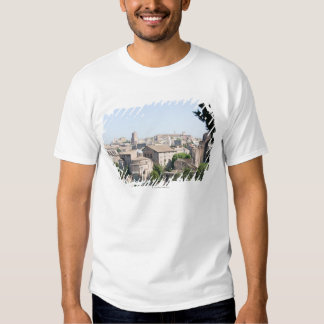 Looking at a section of the Rome Forum from the Tee Shirt