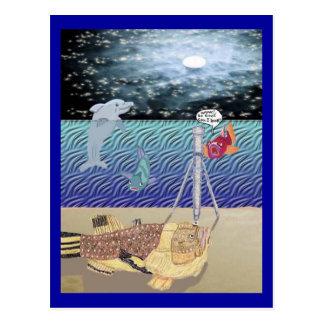 Looking At The Moon Postcard