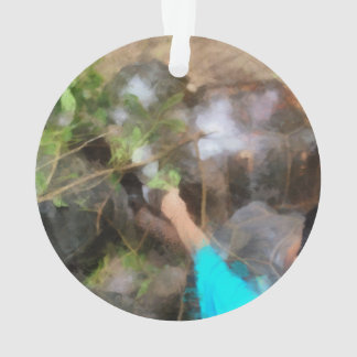 Looking at tortoises ornament