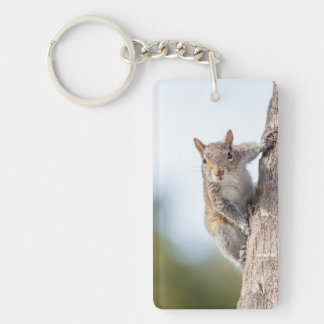Looking at You! Squirrel Keychain