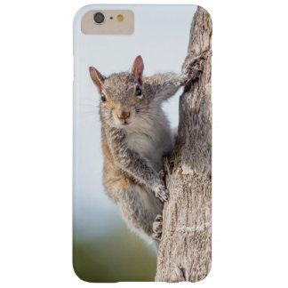 Looking at You! Squirrel Phone Case