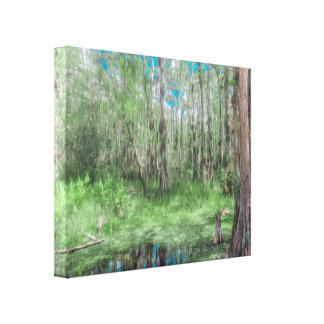 Looking Down at the Sky in the Everglades Canvas