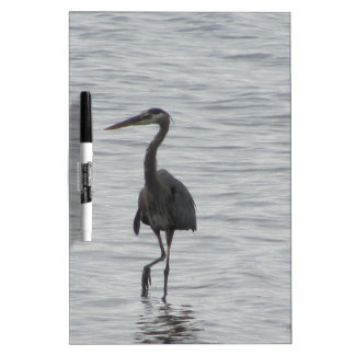 Looking for fish Dry-Erase board