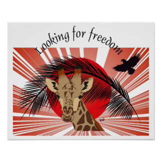 Looking for freedom poster