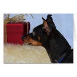 Looking for Santa Min Pin Dog Card
