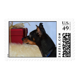 Looking for Santa Min Pin Dog Stamps