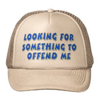 Looking for something... mesh hat