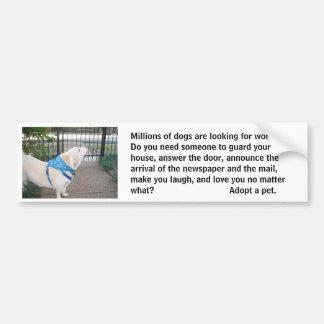 Looking for Work Bumper Sticker