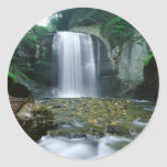 Looking Glass Falls Classic Round Sticker