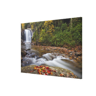 Looking Glass Falls in the Pisgah National Stretched Canvas Print