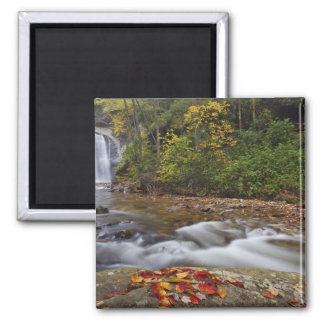 Looking Glass Falls in the Pisgah National Refrigerator Magnet