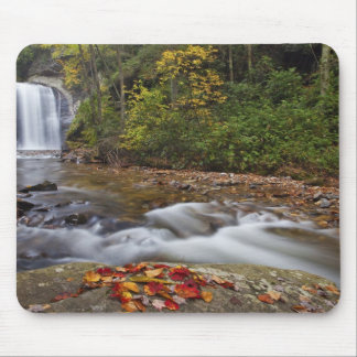 Looking Glass Falls in the Pisgah National Mouse Pads