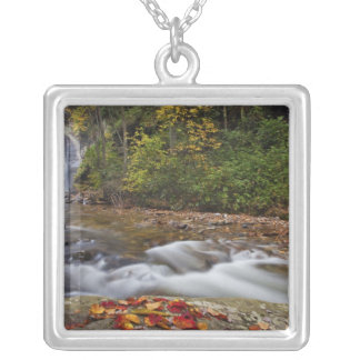 Looking Glass Falls in the Pisgah National Pendant